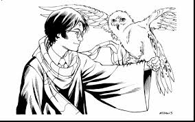 Small Picture spectacular harry potter owl hedwig coloring page with harry