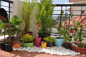 Small Picture 100 Balcony Garden Create Your Own Balcony Garden Design