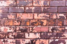free photo old brick wall background