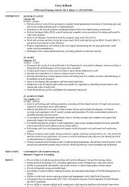 It Audit Resume Samples Velvet Jobs