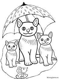 Poezen En Katten Kleurplaten Kleurplateneu