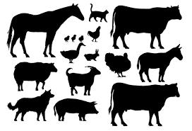 Vettori Animali 57000 File Gratuiti A Ai E Formati Eps