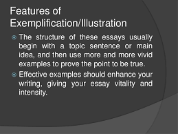 Sample Exemplification Essay Exemplification
