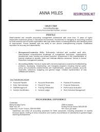 Gallery Of Federal Resume Cv Template Resume Examples Resume