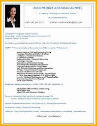 Flight Attendant Objective Resume Examples Flight Attendant Resume Sample Complete Grief Counselor Cover Letter 20