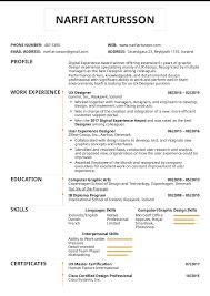 Volunteer Work Resume Examples Resume Resume Examples By Real People Ux Designer Example