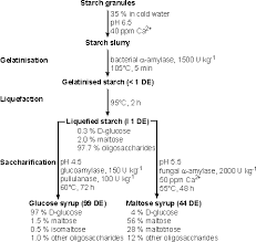 Enzyme Chart The Use Of Enzymes In Starch Hydrolysis