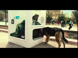 Dog Vending Machine Delectable This Vending Machine Takes Bottles And Gives Food To Stray Dogs In