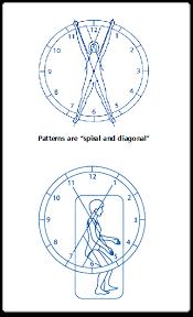 Pnf Patterns Fascinating 대한고유수용성신경근촉진법학회