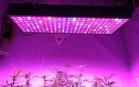 240 5w led grow light