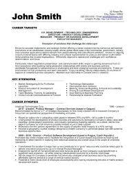 Example Of Sales Resume Best of Vp Sales Resume Resume Web