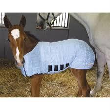 Foal Blankets Shop Horse Baby Blankets Foal Blankets