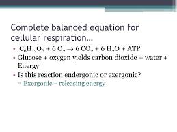 complete balanced equation for cellular respiration c 6 h 12 o 6 6 o