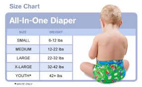 Bumkins All In One Cloth Diaper Borntolove Com