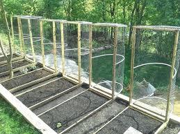 squirrel proof vegetable garden garden protection from deer on twitter recent project raised bed vegetable garden