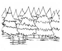 Small Picture Pine Trees Coloring Pages Coloring Pages
