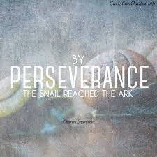 Christian Perseverance Quote | Quote Number 570956 | Picture Quotes