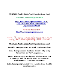 Xmgt 230 Week 5 Check Point Organizational Chart
