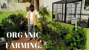how to start your organic terrace garden in kannada praveen ar bangalore part 1