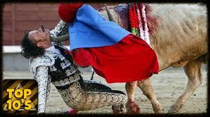 bull fighting injuries. Simple Fighting In Bull Fighting Injuries T