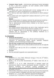 page essay outline info 5 page essay outline 5 page essay examples 5 page essay format example