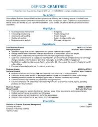 Excellent Resume Template 8 Professional Senior Manager Executive Resume Samples