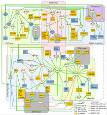 the impact of emerging technologies  media viewerdescription text  this elaborate diagram shows the complex network