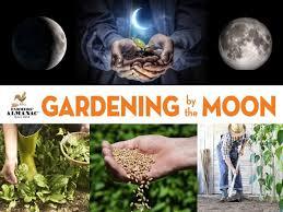 the moon gardening calendar