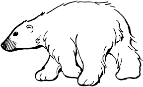 Small Picture Polar Bear Coloring Pages for Kids Enjoyment ALLMADECINE Weddings