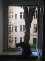 Diy Fenstersicherung Für Katzen Ohne Bohren Diy Katzen Kratzbaum