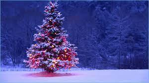 10+] Christmas Tree Desktop Backgrounds ...