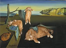 salvador dali the purrsistence of cats meowmory