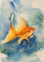painting watercolor goldfish artmade watercolor and oil painting ping on my