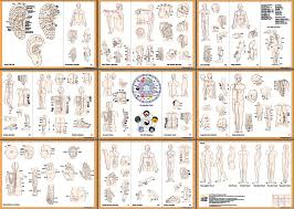 Pressure Point Charts Free The Body Meridians An Energy Map
