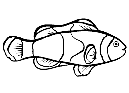 Small Picture Clown Fish Coloring Pages Printable Coloring Pages