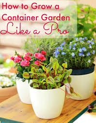 container garden. Thinking About Starting A Container Garden? Read This First! I\u0027ll Give You Garden