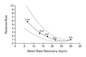 Heart Beats Per Minute Chart Heart Rate Recovery Immediately After Exercise As A