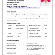 Basic Resume Format In Word Free Resume Templates