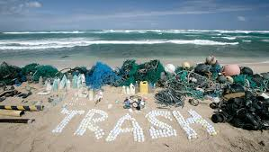 Müllkippe Meer Greenpeace