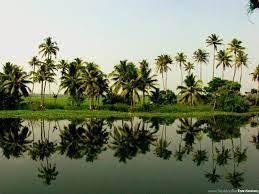 Kerala HD Wallpapers HD Widescreen ...