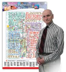 Nicholson Metabolic Pathways Chart Dr Nicholson And His Metabolic Maps The Occasional