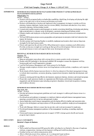 resume for human resources manager senior human resources manager resume samples velvet jobs