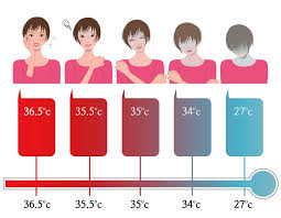 Ultimate Guide Of Checking Body Temperature Thermopro