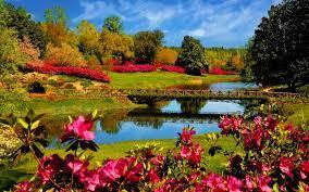 46+] Beautiful Spring Nature Desktop ...
