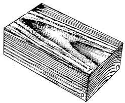 Реферат Строение основные свойства и применение древесины  Строение основные свойства и применение древесины