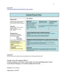sample career plan sample career plan
