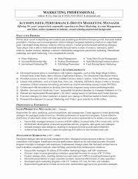 Marketing Executive Resume Sample Best Executive Resume format Lovely Marketing Professional Resume 45