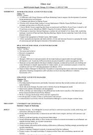 Strategic Accounts Manager Resume Samples Velvet Jobs