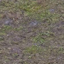 Dirt grass texture seamless Dry Grass Grass Mud Dirt Dead Texturescom Grass0136 Free Background Texture Grass Mud Dirt Dead Green
