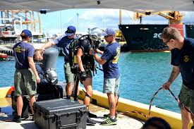 essay about hawaii essay classmate birds of hawaii a photographic  u s department of defense photo essay navy divers conduct training in hawaii